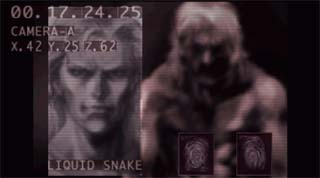 Briefing: Liquid Snake